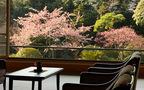 ひと足早く春を感じる、「いづみ荘」伊東温泉で早春お花見会
