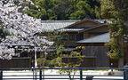 桜を愛でる旅、「星野リゾート・界」春爛漫の日本旅