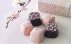 桜風味のクッキーとチョコレートの新しい出会い