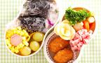 GW・行楽シーズンにピッタリのお弁当コンテストを発見
