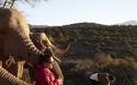 「地球の贈り物に出会う」南アフリカの旅(3) 動物たちとグッドモーニング!