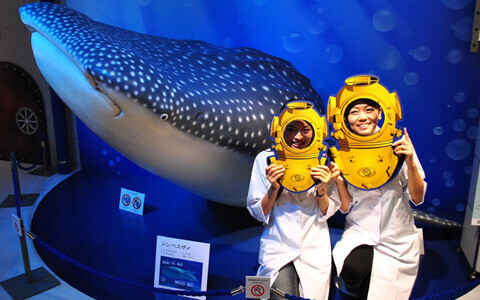 実物大ジンベエザメも!銀座に沖縄美ら海水族館が上陸