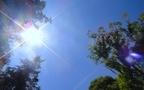 一年中で一番危険! 初夏の紫外線対策