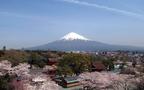 富士山パワーをもらえる神社で、新しい1年を迎えよう