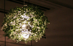 「森の光に迷い込む」リラクゼーション照明