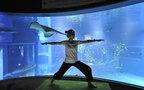 水族館は頑張る大人女子のためにもある! イベント「夜ヨガ×夜の海遊館」で癒し効果を実感