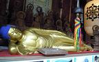 広島・嚴島神社とセットで訪れたい! 女子が通う最強ご利益スポット
