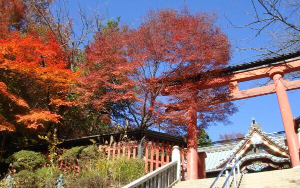 紅葉狩りトレッキングへ出かけよう! 初心者にもおすすめ、紅葉が美しい山はコチラ