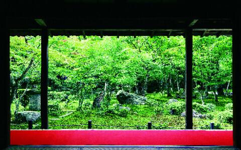 ひとり旅が断然おすすめ、最新・京都の楽しみ方とは?