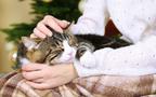 ペットには少しでも長生きしてほしいから! 「ペット長寿国プロジェクト」に新パートナーが参加