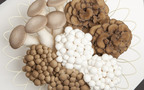 目指せ菌活マイスター! 健康にもダイエットにも美容にもよい菌活生活をチェック