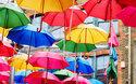 「梅雨のマメ知識」傘&レインブーツを長く愛用するには