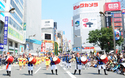 沖縄に徳島、高知も! 都内で楽しめる地方のお祭り3選