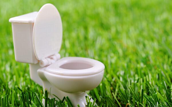 トイレのフタは閉める? 閉めない? 世界のトイレ事情1