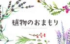 """気持ちをふんわりもち上げる植物で""""雰囲気美人""""になる【植物のおまもり Vol.3】"""