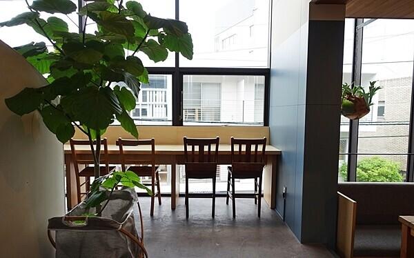 遅めランチもOK 開放的な空間でくつろげる隠れ家カフェ#TRITON CAFE 代官山 #おしゃれカフェ Vol.17