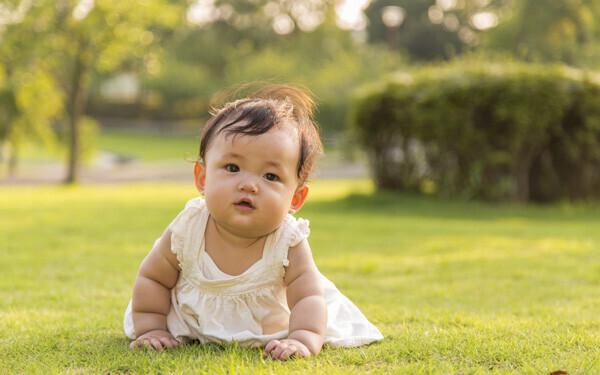 芝生でハイハイする赤ちゃん