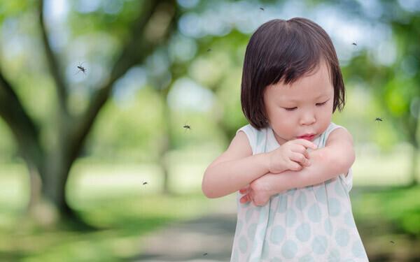 夏の森の中で虫に刺される幼い女の子