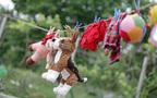 ホコリ・カビ・ダニから子どもを守る、ぬいぐるみの洗濯&乾燥方法
