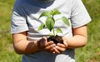 ガーデンニングママにおすすめ 除草剤の使い分けでできる頑張らない草取り