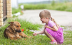頭をさわるのはキケン? 子どもが動物とふれあうときの注意点