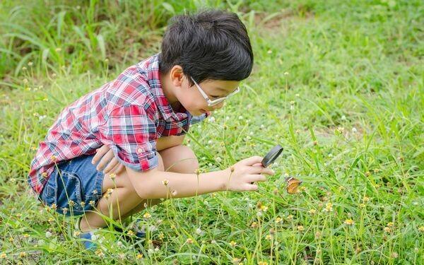 昆虫を観察する子ども