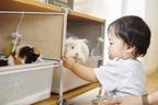 ペットのためのアイテムも、自由な発想で選ぶ 【atsushiさん家のインテリア #03】