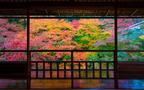 子どもも退屈しない「京都旅行」 子連れOKの観光スポット