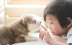 子どもとペットのリアル生活を暴露! 情操教育に良いって実感できてる?