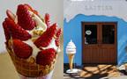 カリッとピスタチオ、山盛りの「紅ほっぺ」いちご! フレンチ出身夫婦のソフトクリーム店 #千駄ヶ谷 #レティエ #おしゃれカフェ Vol.34
