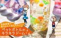 自由研究や赤ちゃんのおもちゃにも! ペットボトルのキラキラドーム【おうちで季節イベント お手軽アートレシピ Vol.19】