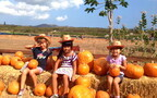 子どもが主役のハワイ流ハロウィンは、みんながオハナ!