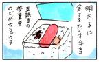 お弁当作りは憂鬱なミッション? 母の愛情弁当を思い出してじーんとするお話し【『まりげのケセラセラ日記 』】  Vol.4