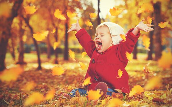 目で見て、耳で聞いて、食べてにっこり。秋のおとずれを感じられる絵本【親子で楽しむ絵本の時間】 第22回