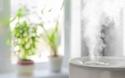 湿度50%がウィルス活性化のボーダーライン!? 我が家の加湿対策はコレ【パパママの本音調査】  Vol.220