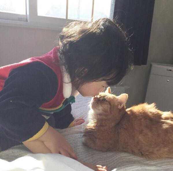 【いぬねこ うちのこ。】キィちゃん(5歳)、ナギくん(2歳)と3匹のねこ /ayaneko*さん