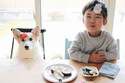 【いぬねこ うちのこ。】ようくん(3歳)とコーギーのニナちゃん/camiさん