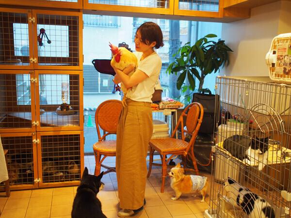 """小さな子どもと犬猫たちが  """"家庭で共生する""""  ためのコツ【友森玲子さんインタビュー】(前編)"""