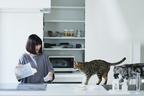 猫は掃除の神様?! 大掃除がいらない、猫がよろこぶ掃除・片づけのすすめ