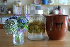 梅シロップ&梅酒作りは子どもと一緒に! 我が家の梅しごと記録&レシピ