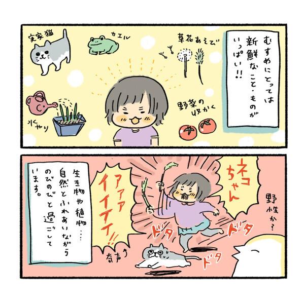 秋田の大自然でパワフルになった娘の遊びと「寒天で固めてしまう」謎の文化について【ふるえるとりの育児日記 第16話】