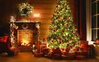 12月23日~12月29日の週間運勢占いランキング! 1位の星座は…?