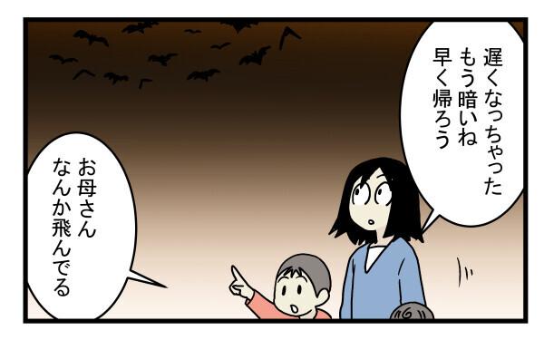 ゴキブリやネズミ以上の脅威かも!? 意外と身近にいたコウモリの話【こどもと見つけた小さな発見日誌 Vol.11】