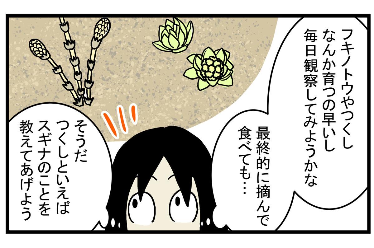 春の植物は意外と知らないこともたくさんありそう