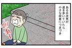 まるで漫画の表現のよう…次男がダイナミックに転んでできた「大きなたんこぶ」【こどもと見つけた小さな発見日誌 Vol.27】