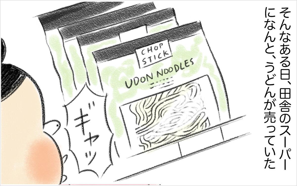 ついに夫がおかわりする日本食メニューが登場! 疲弊していた妻に急展開⁉ 【スイス人夫VS日本人妻 〜家族の偏食、どう乗り切る?〜 Vol.5】
