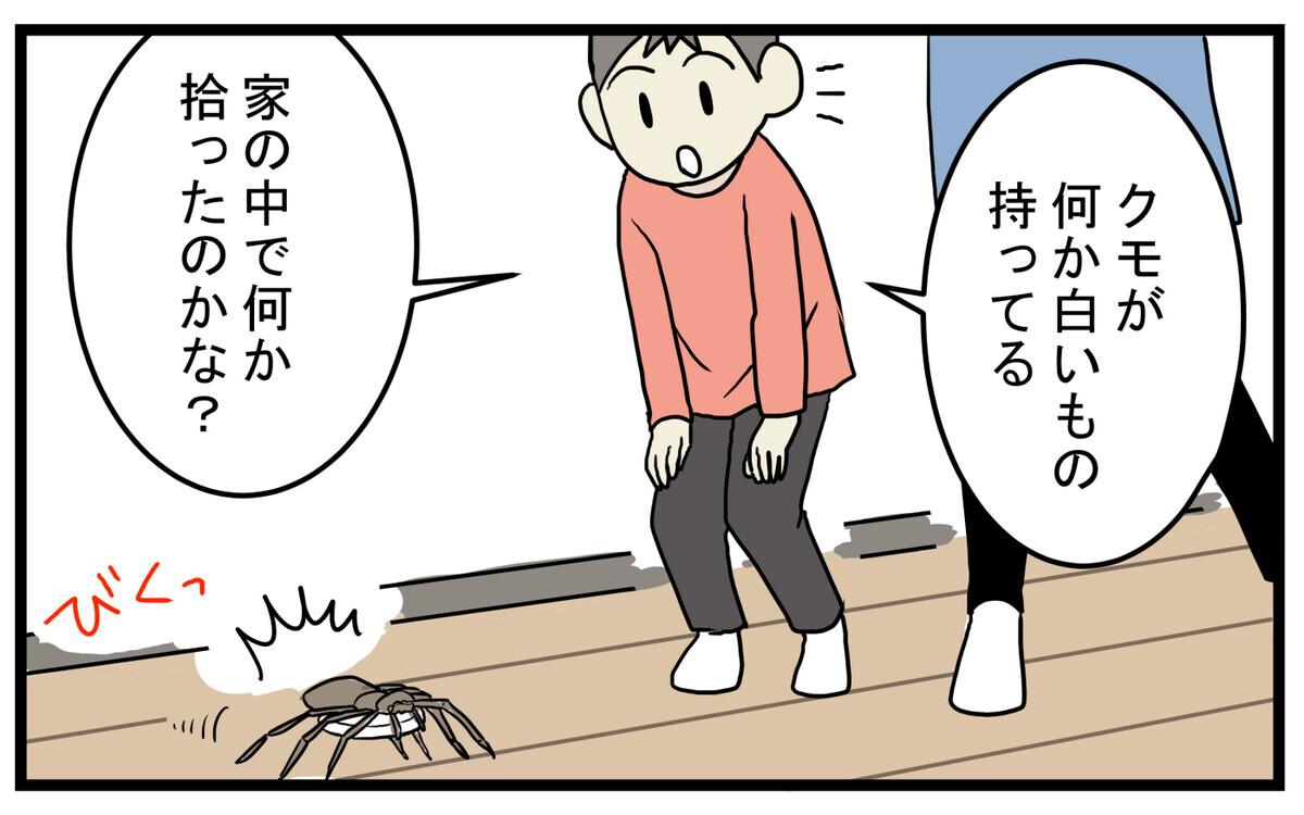 そんなクモがある日、不思議なものを持って歩いていました