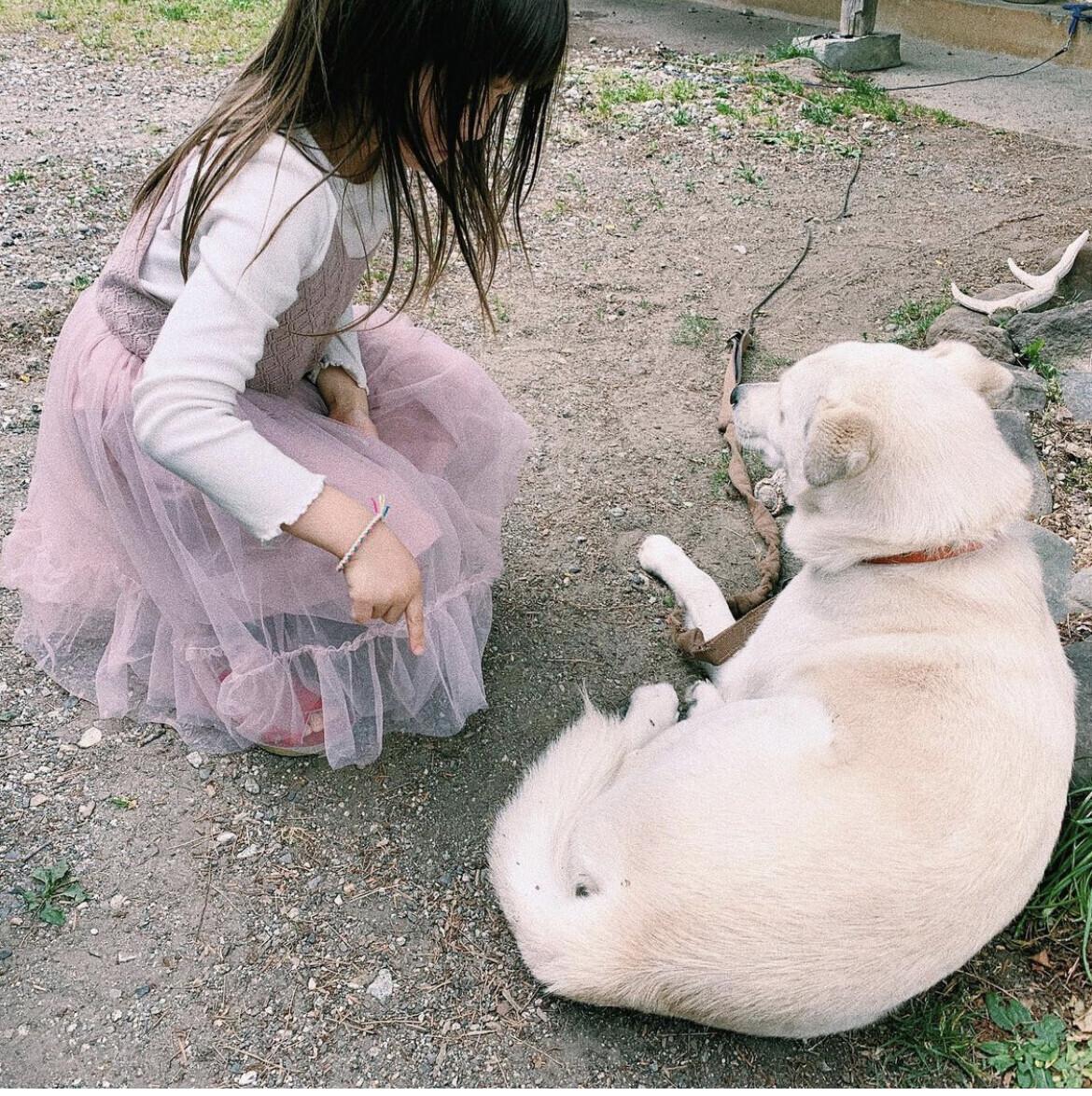 子どもと一緒に楽しみながら動物愛護を学べる「いぬねこなかまフェス」を開催! ~坂本美雨さんインタビュー