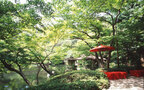 """いつでも帰れる""""ふるさと""""を東京に クラシックだけど新しい結婚式のカタチ"""
