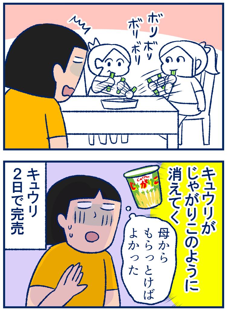 おやつのように消費しちゃう「夏野菜」はどれだけあっても困らない【双子を授かっちゃいましたヨ☆ 第235話】